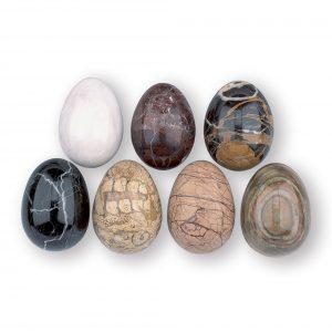 Eggs & Miscellaneous
